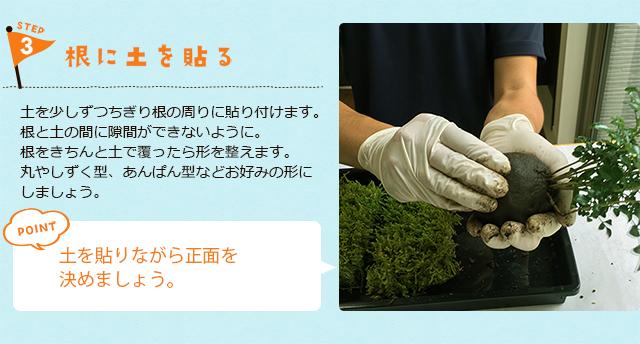 苔玉の作り方3