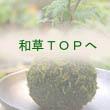 みどり屋 和草(にこぐさ)TOPへ